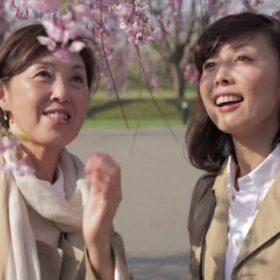 【3月アプリ会員限定】男爵桜旅…春風舞う、函館へようこそ。「素泊り」特別料金プラン≪駐車場利用料無料≫